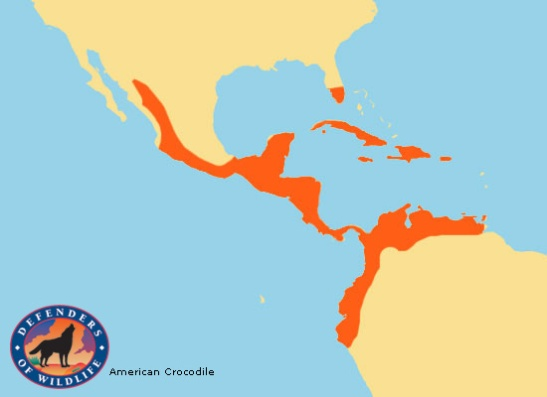 american-crocodile-range-map