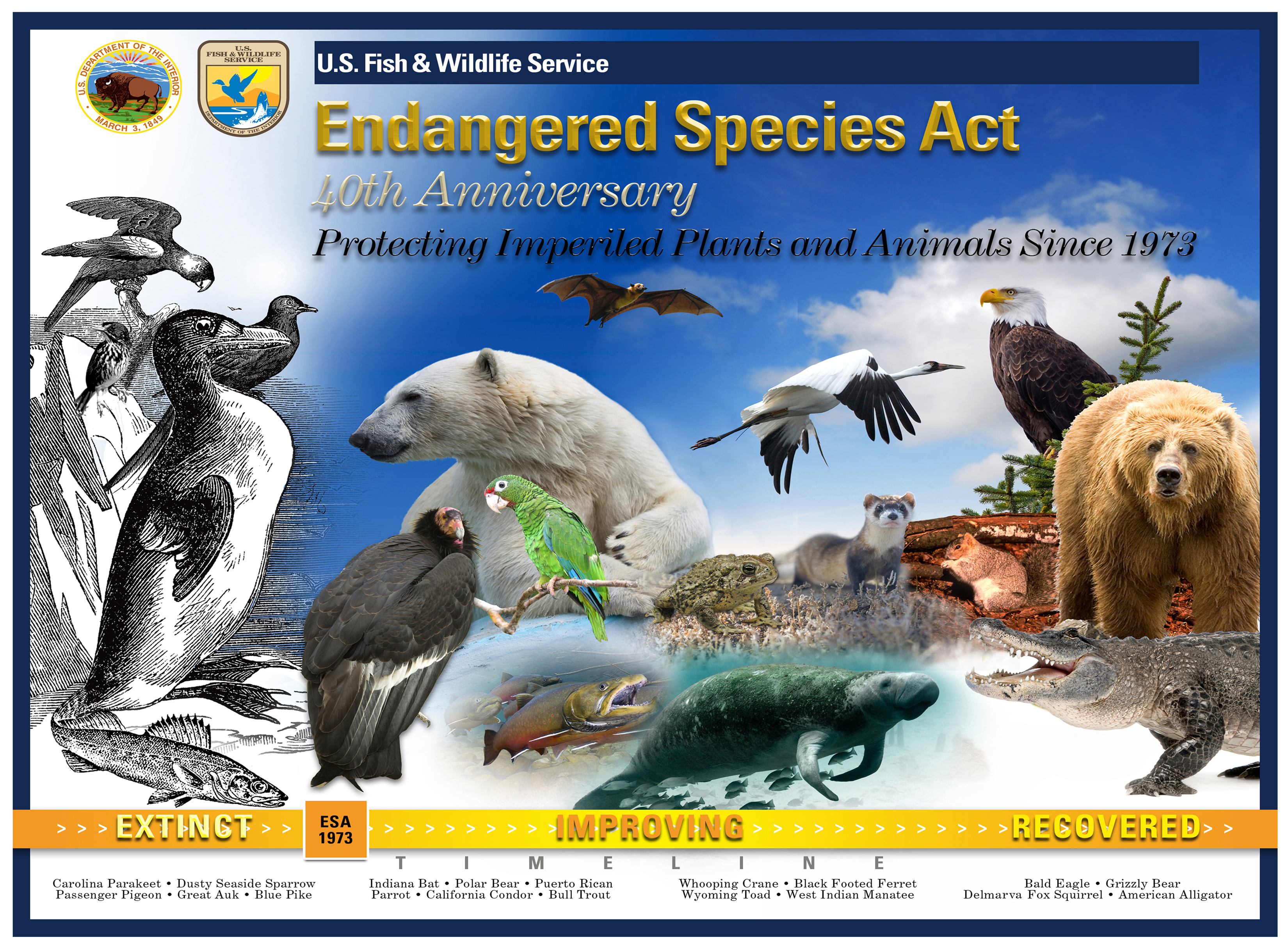 the legacy and future of the endangered species act | the whisker