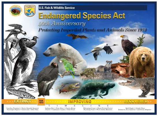 ESA_40th_Anniversary_Poster
