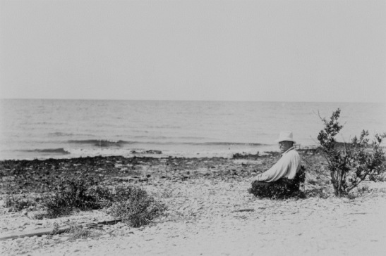 Theodore Roosevelt at Pelican Island.  Photo courtesy of Library of Congress