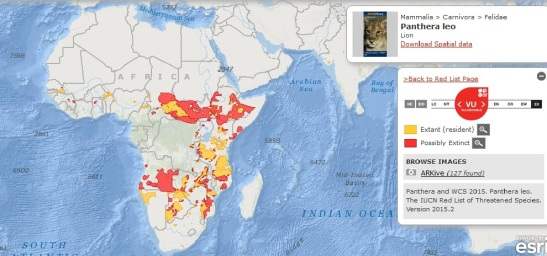 IUCN Range Map Lion